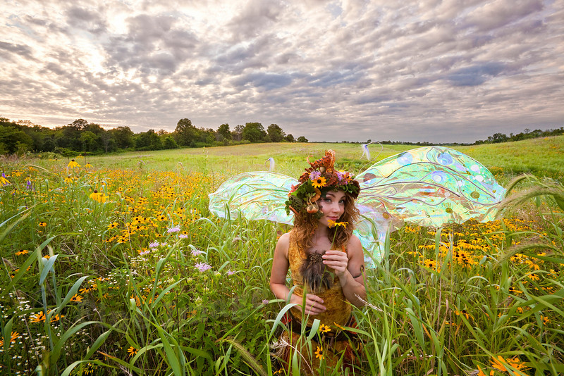 """TWIG THE FAIRY:  SUNFLOWERS"""