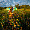"""TWIG THE FAIRY:  AMONG THE WILDFLOWERS"""