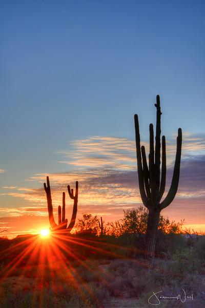 Sunset Spray, Gold Canyon Arizona