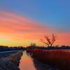 PreDawn Colors Bosque Apache New Mexico