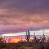 Desert Sky Color After the Storm