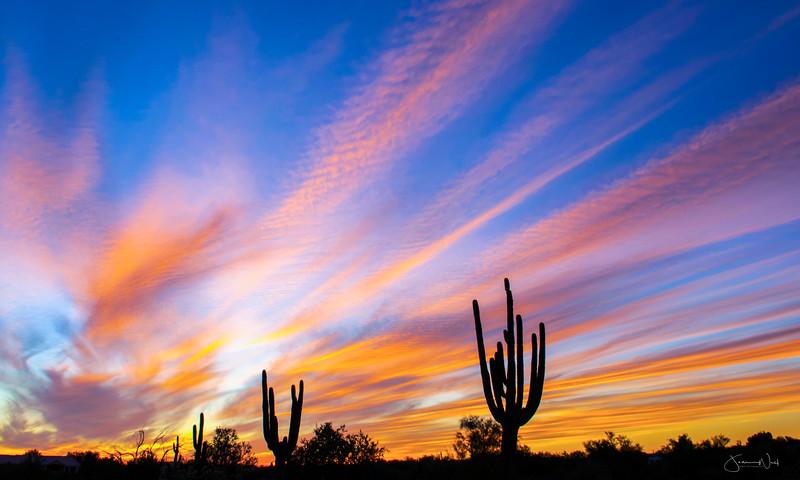 Radiant Sunset Arzona