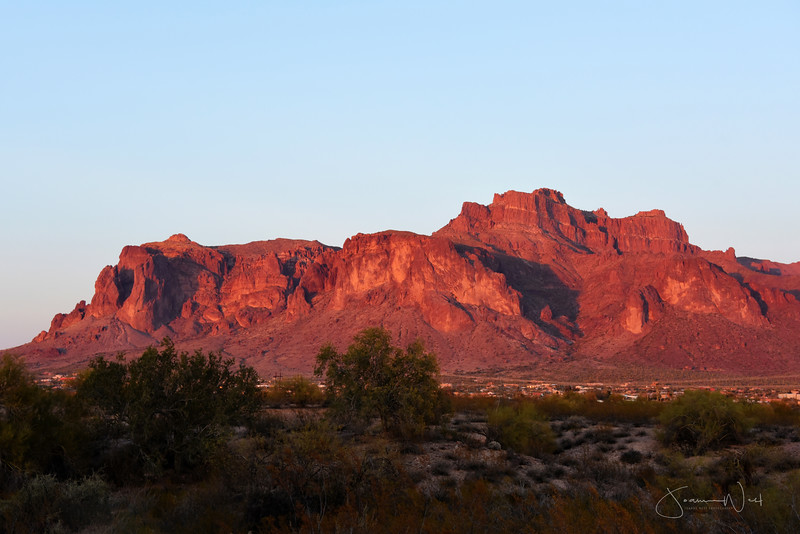 Cougar Chasing Its Prey Shadow on Superstition Mts