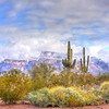 Superstition Mountain New Year Day Morning Surprise