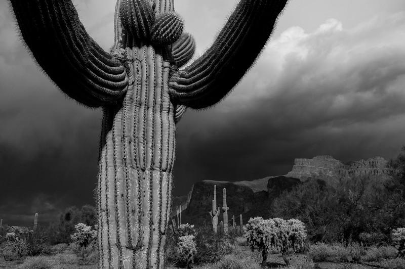 Summer Storm,  Superstition Mountains Arizona