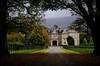 Muckross House Framed in the tree's