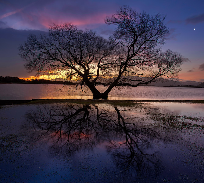 Sunrise Behind a Tree with reflection at Killarny Golf & Fishing Club