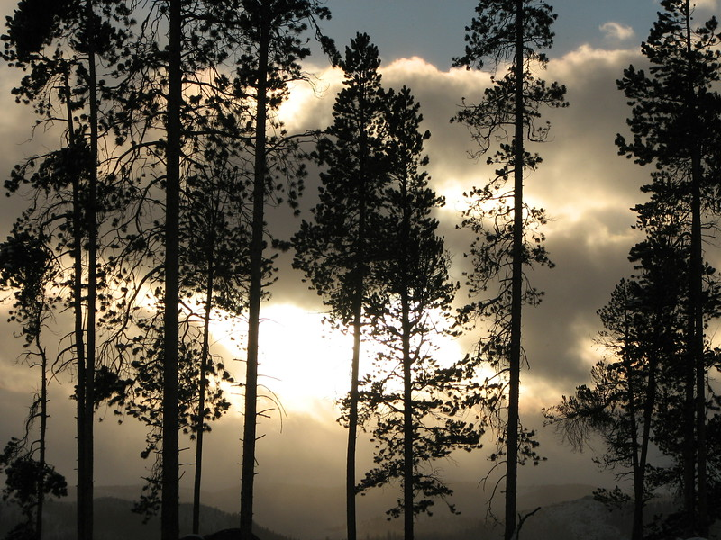 Sunset on the Lodge Poles III