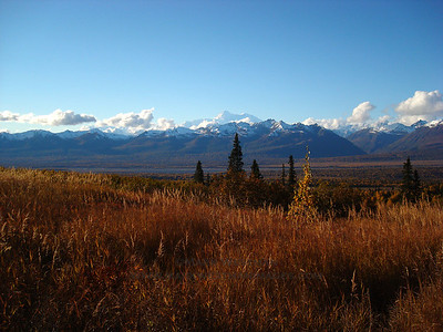 Denali in autumn from Ermine Hill trail in Denali State Park