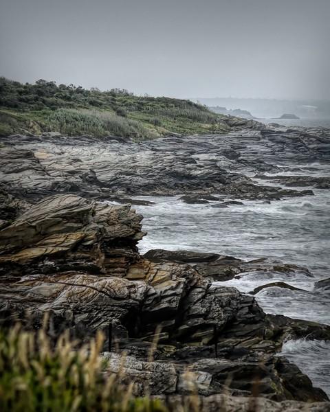 Coast Line Beavertail II