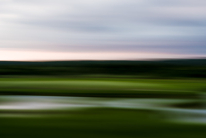 myopic wetland