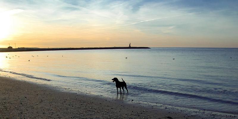 Sunset at Bailies Beach (1 of 1)