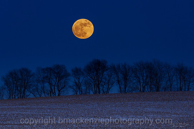 Full Winter Moon