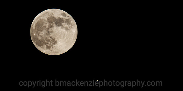 Strawberry Full Moon and Saturn