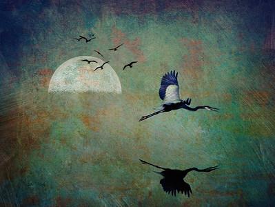 Blue Heron Moon