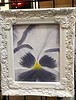 Pansy Painting - Fine Art Leasing - Petoskey