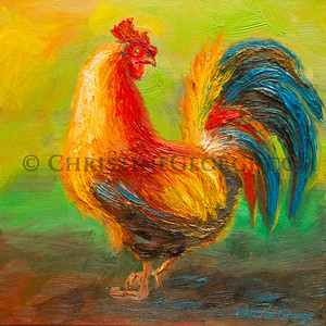 L103_ROOSTER_7995