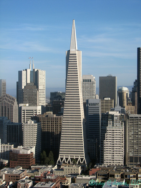 TransAmerica Building in San Francisco, Calfornia
