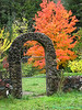 Tree and Gate in Tiller, Oregon