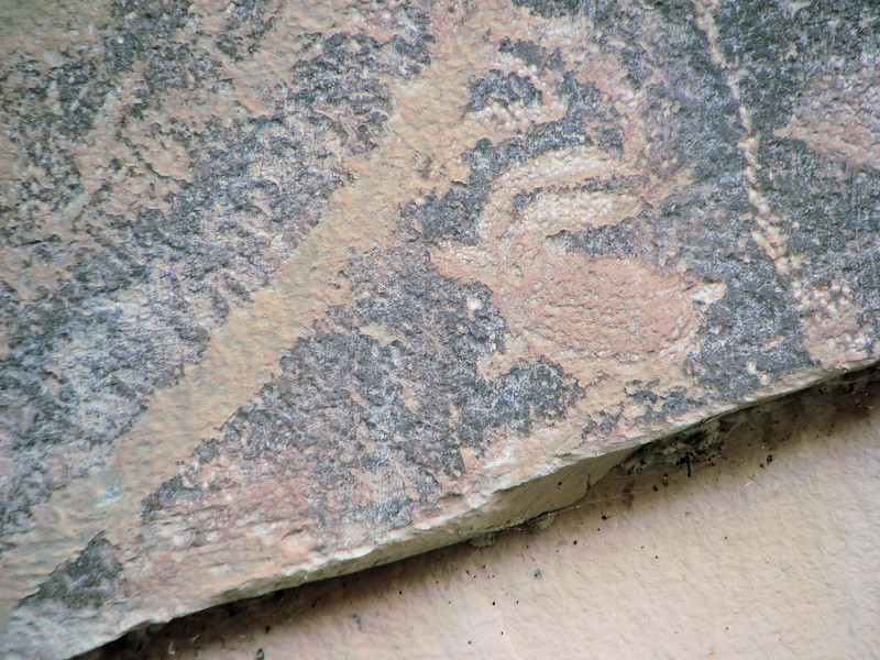 Petrogliph, Capitial Reef National Park, Utah.