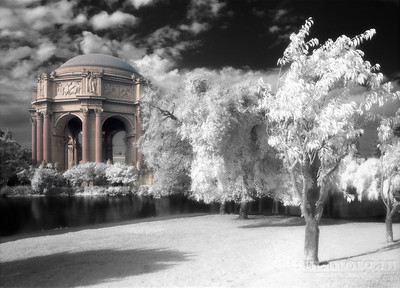 S156-2-4c Palace of Fine Arts I
