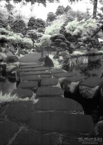 S171-2-15c tea garden stone path