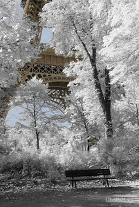 Eiffel Tower Paris, France #S162-0230c