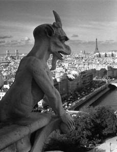 Gargoyle Atop Notre Dame Paris, France #S119-24-7