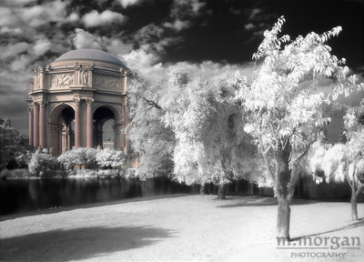 Palace of Fine Arts I San Francisco, California #S156-2-4c