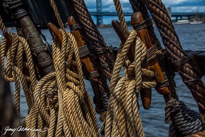 2015-06-28-Tall-Ships-Philly-226
