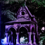 Pictures of Oakwood Cemetery in Syracuse New York taken by Mariana Roberts Photography