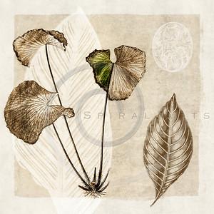 Vintage Botanicals Series I