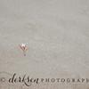 derksen photography stock photo-7