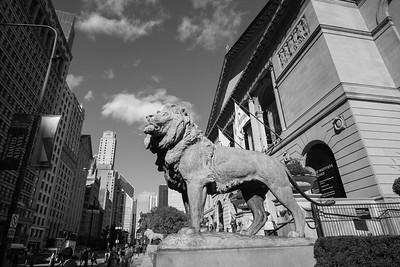 Chicago Natural art museum