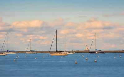 Harbor #1