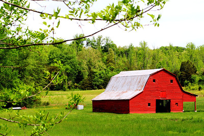 Barn in Anderson Co