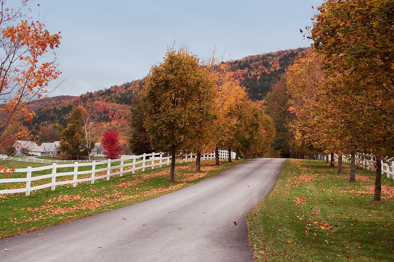 The country roads are breathtaking with their picturesque white fences and rows of trees in full Fall colors.