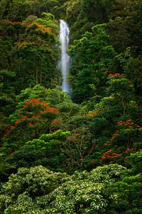 Mea'Huna falls