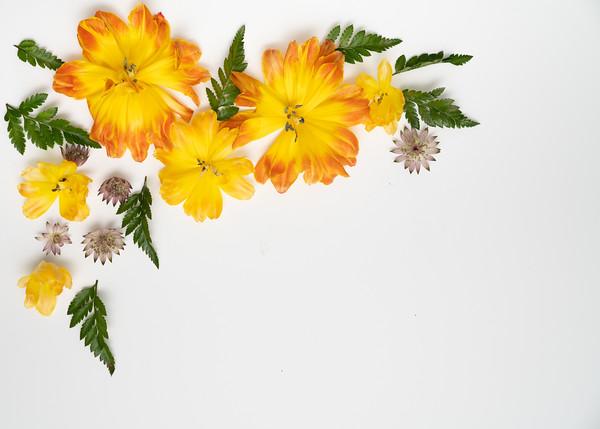 Flower Power (6)