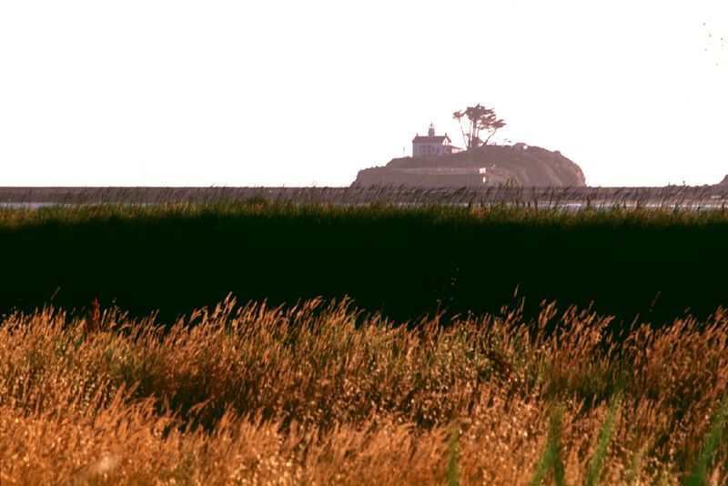 F007  Golden Fields and Lighthouse, Crescent City, California