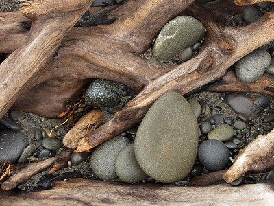 Stones and driftwood roots Washington Coast Pacific Northwest