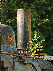 Locomotive smokestack in the Pacific Northwest