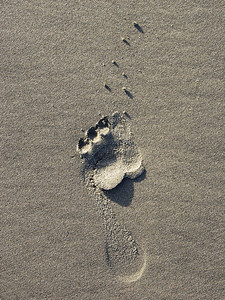 Footprint in beach sand Washington Coast Pacific Northwest