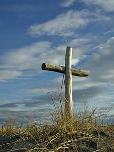 Log cross and beach grass, Washington Coast, Pacific Northwest.