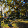 Hollywood_Cemetery_30