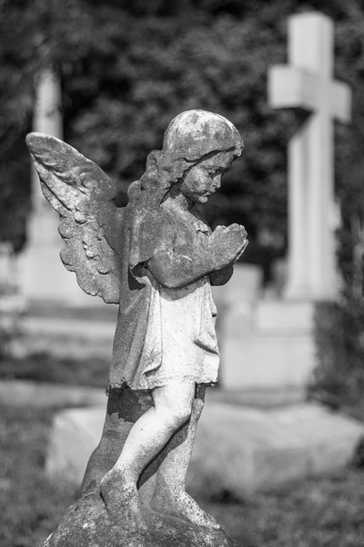 Hollywood_Cemetery_20