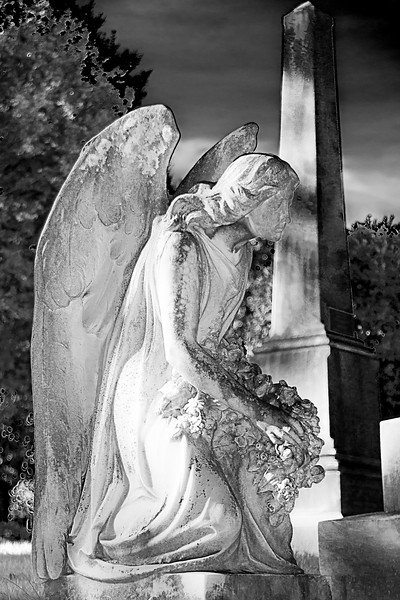 Hollywood_Cemetery_01