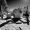 Hollywood_Cemetery_25