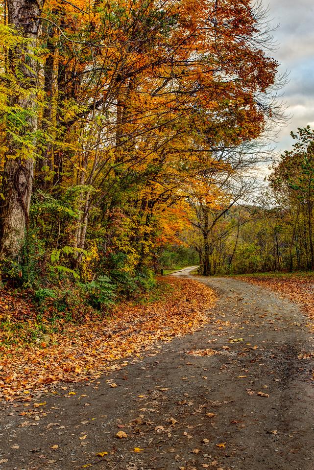 Back road near Tellico Plains, TN