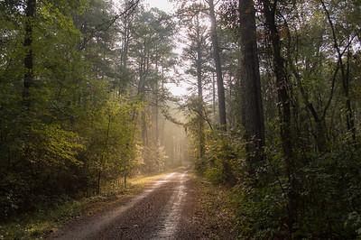 Arkansas Road #2